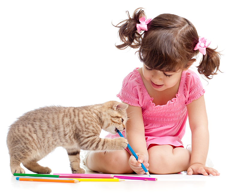 Alternatives to declawing -- Your family